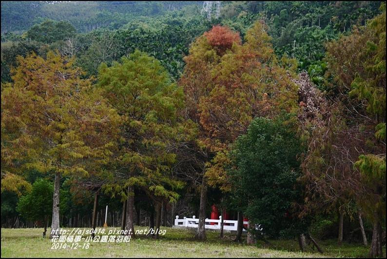 2014-12-獅子公園落羽松18.jpg
