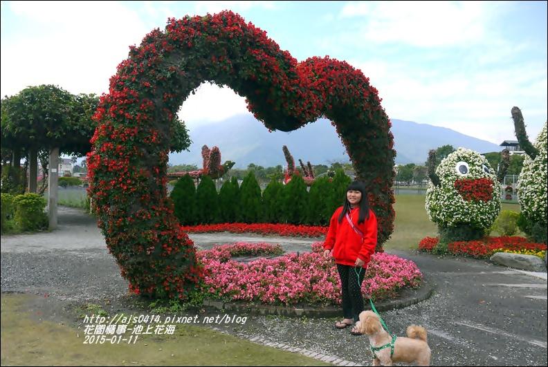 2015-01-池上花海2.jpg