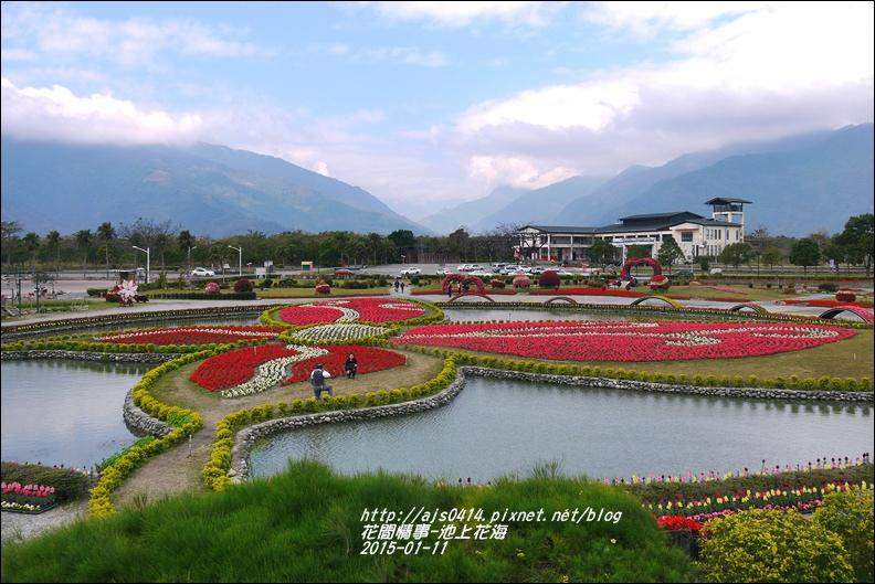 2015-01-池上花海7.jpg