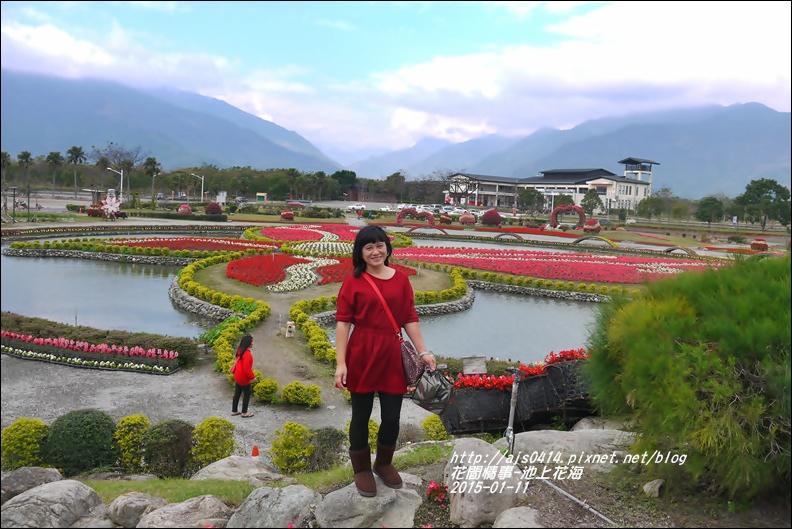 2015-01-池上花海10.jpg