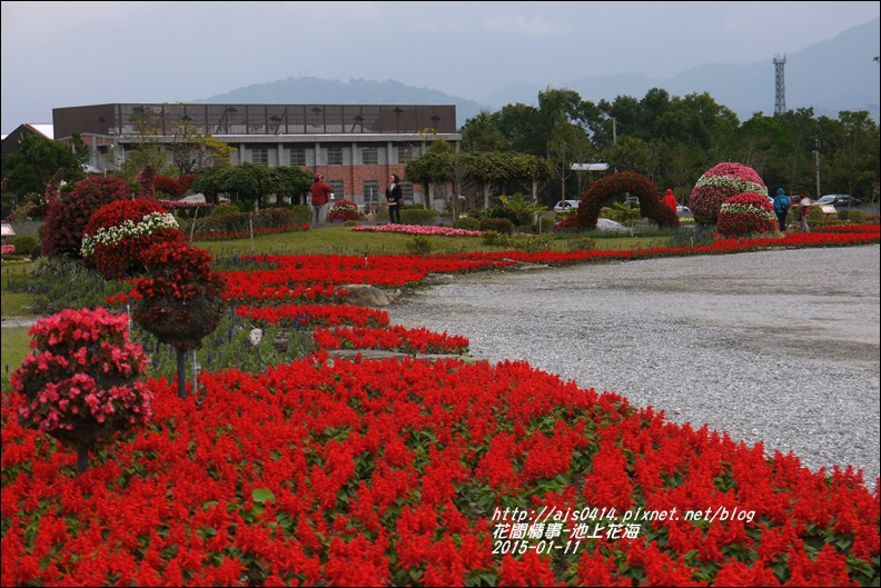 2015-01-池上花海21.jpg