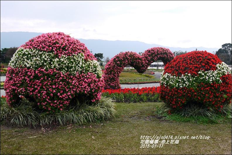 2015-01-池上花海33.jpg