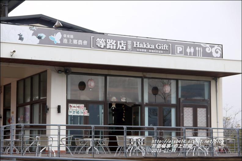 2015-01-池上花海35.jpg