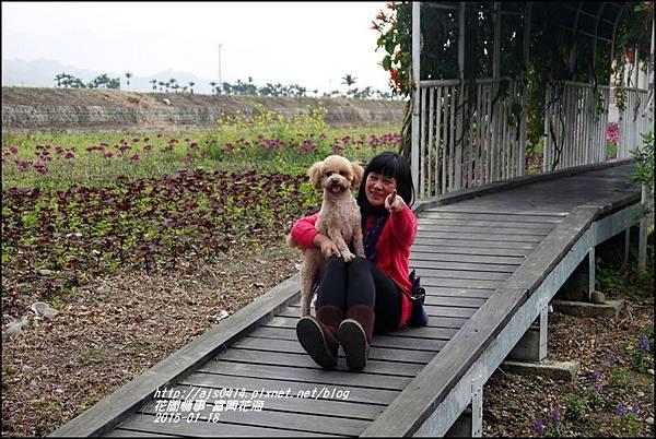 2015-01-瑞穗富興花海12.jpg