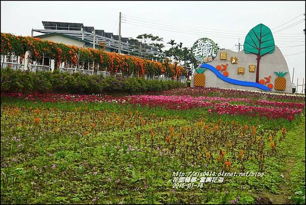 2015-01-瑞穗富興花海18.jpg