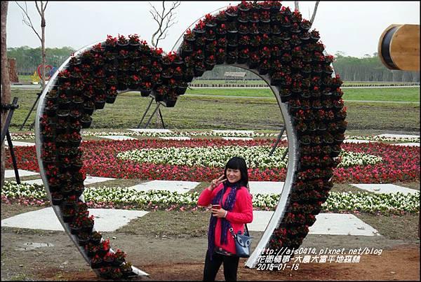 2015-01-大農大富平地森林3.jpg