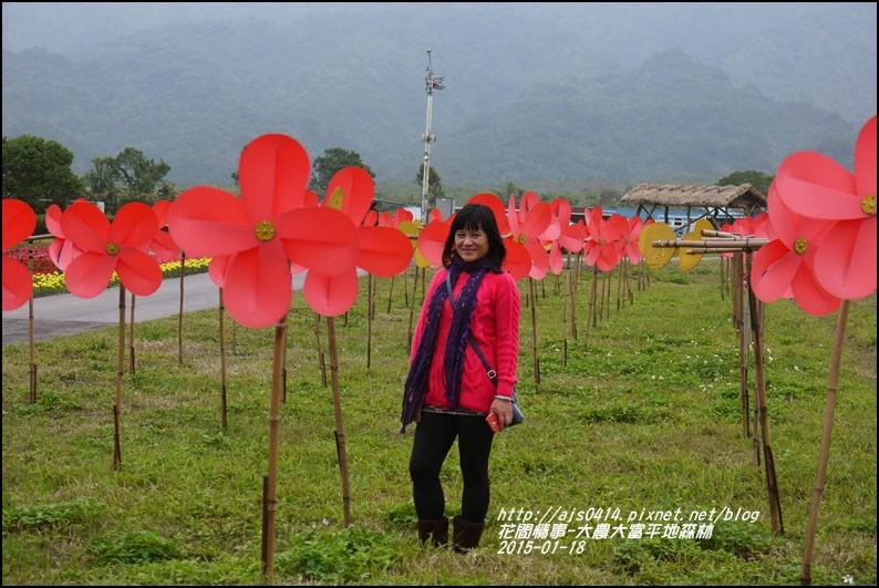 2015-01-大農大富平地森林15.jpg