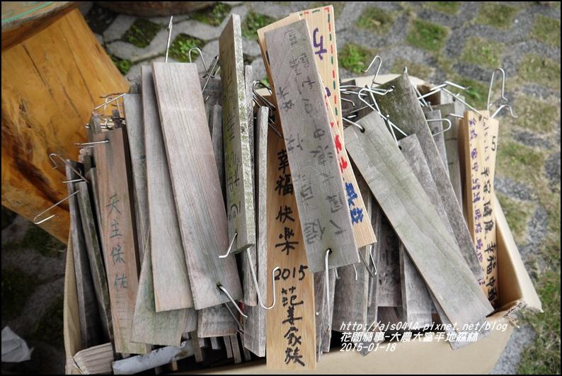 2015-01-大農大富平地森林23.jpg
