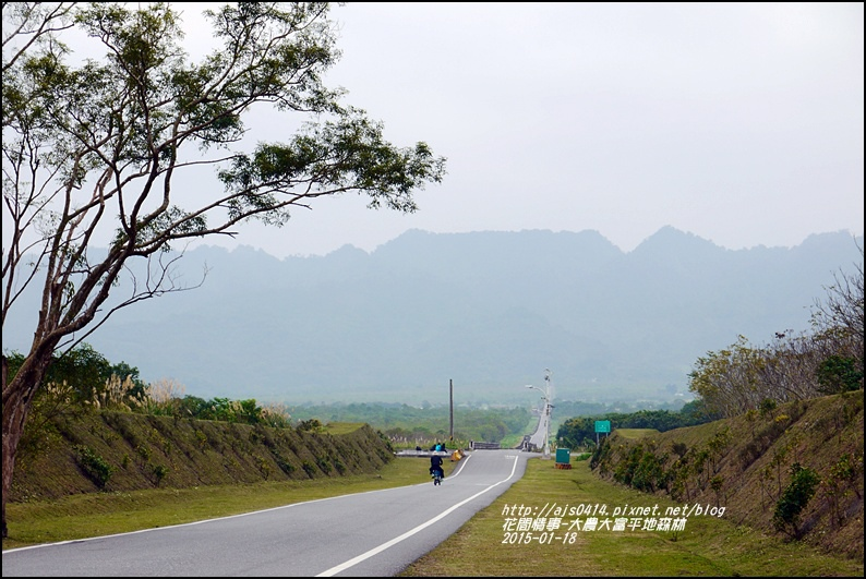 2015-01-大農大富平地森林26.jpg
