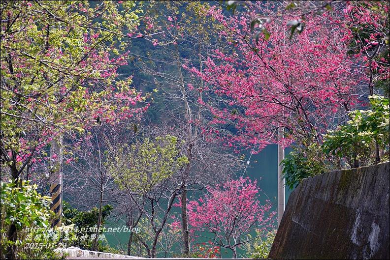 2015-01-玉山神學院21.jpg
