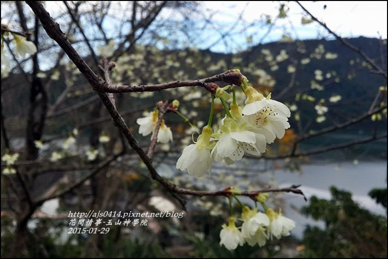 2015-01-玉山神學院29.jpg