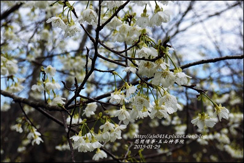 2015-01-玉山神學院31.jpg