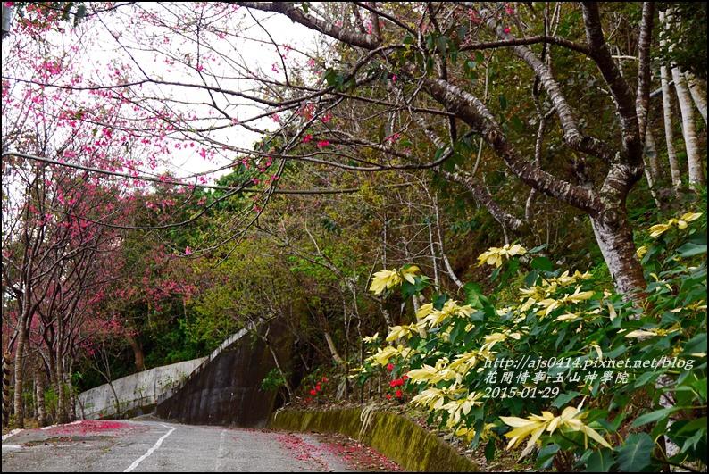 2015-01-玉山神學院34.jpg