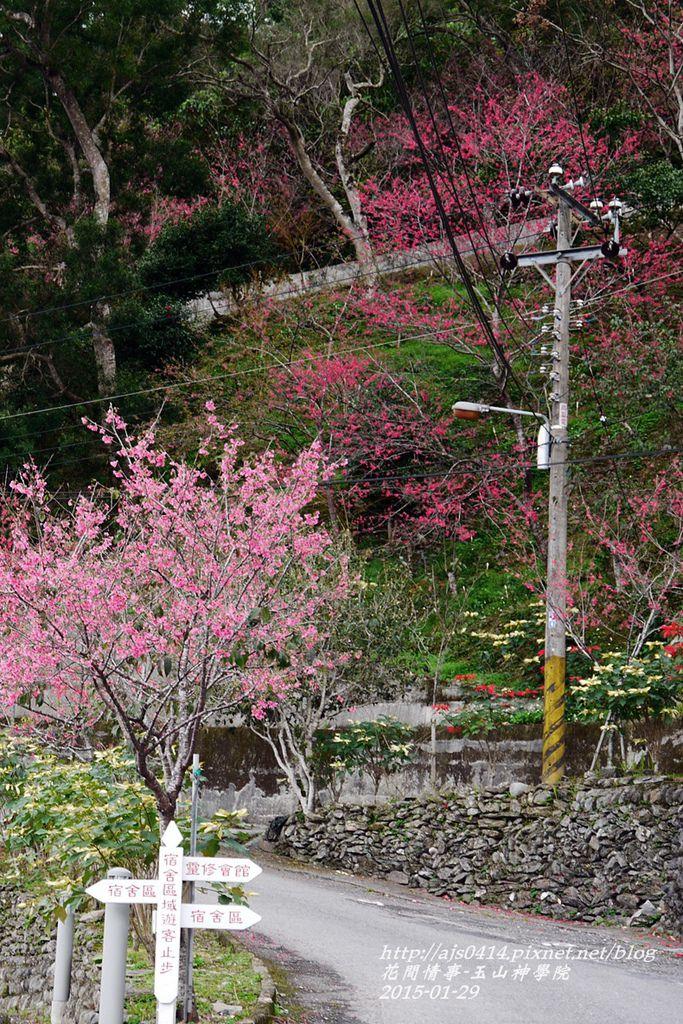 2015-01-玉山神學院36.jpg