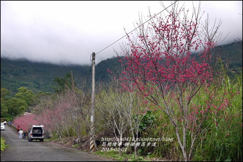 2015-02-樹湖櫻花步道42.jpg
