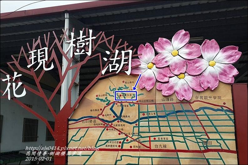 2015-02-樹湖櫻花步道5.jpg