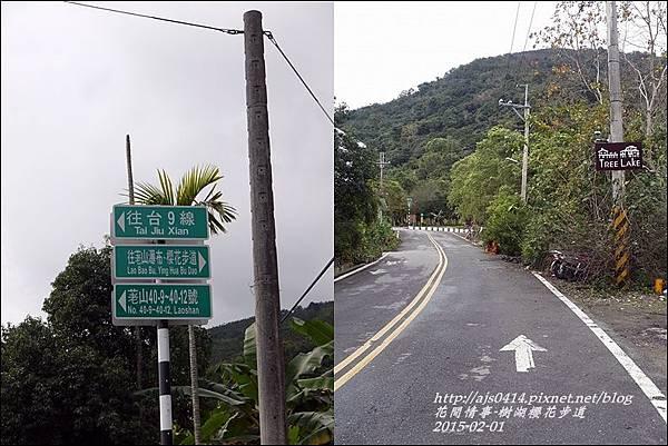 2015-02-樹湖櫻花步道4.jpg