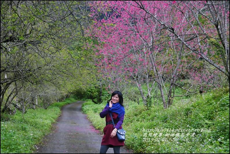 2015-02-樹湖櫻花步道21.jpg