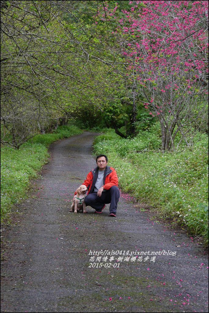 2015-02-樹湖櫻花步道23.jpg
