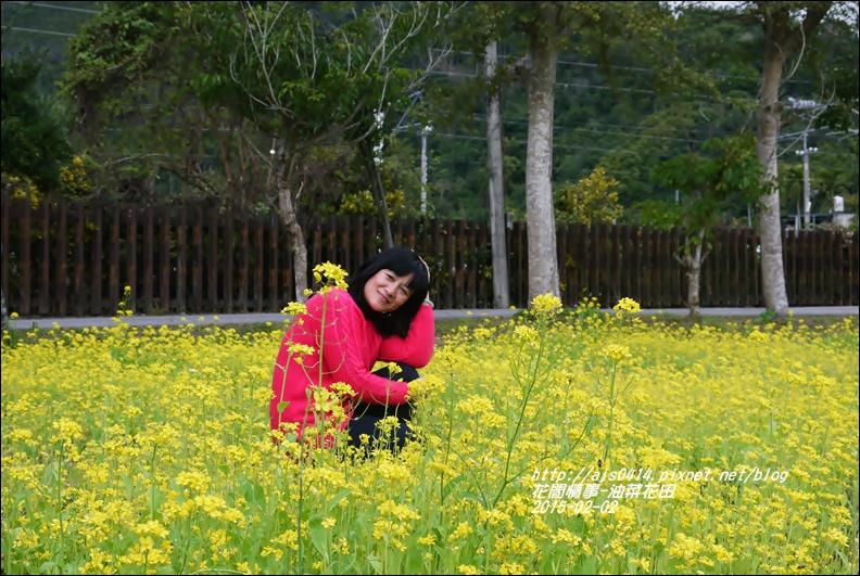 2015-02-油菜花田1.jpg