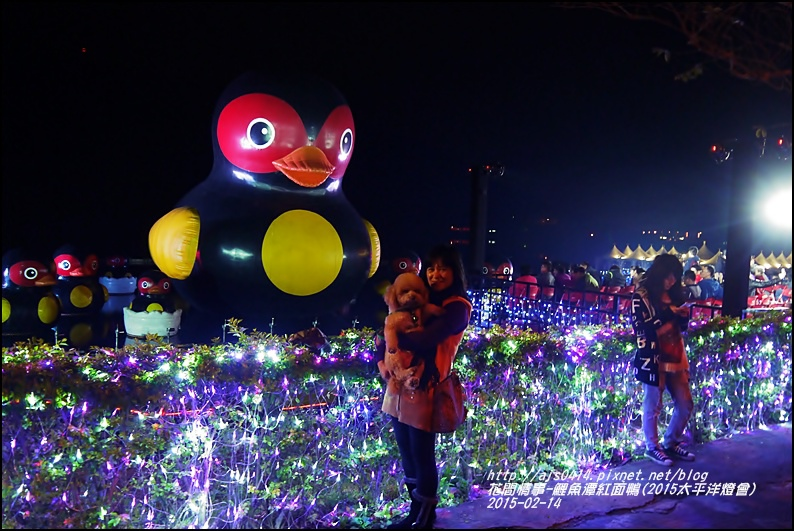 2015-02-鯉魚潭紅面鴨(太平洋燈會)8.jpg