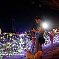 2015-02-鯉魚潭紅面鴨(太平洋燈會)9.jpg