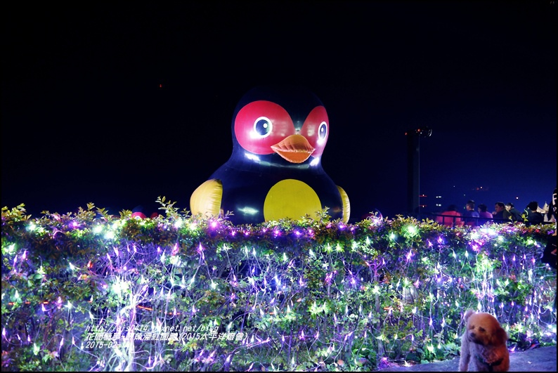 2015-02-鯉魚潭紅面鴨(太平洋燈會)22.jpg