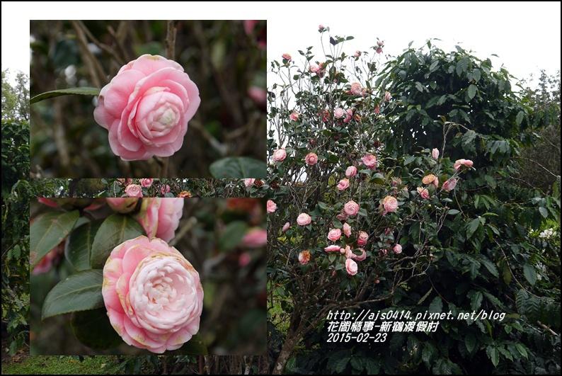 2015-02-新鶴渡假村16.jpg