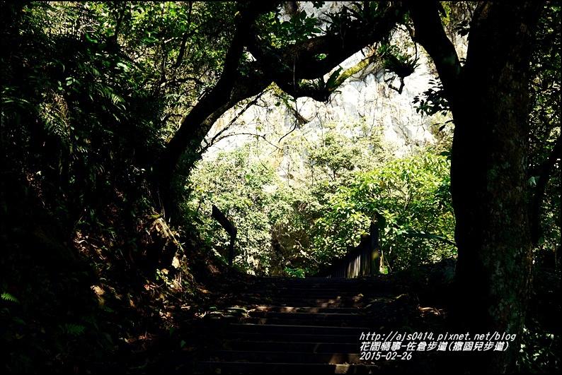 2015-03-佐倉步道(撒固兒步道)13.jpg