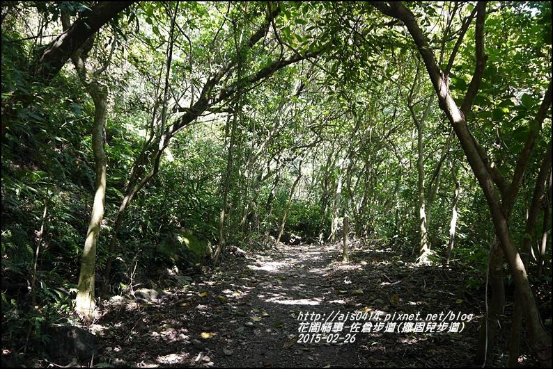 2015-03-佐倉步道(撒固兒步道)24.jpg