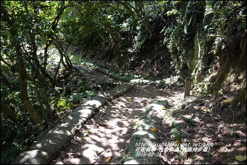 2015-03-佐倉步道(撒固兒步道)28.jpg