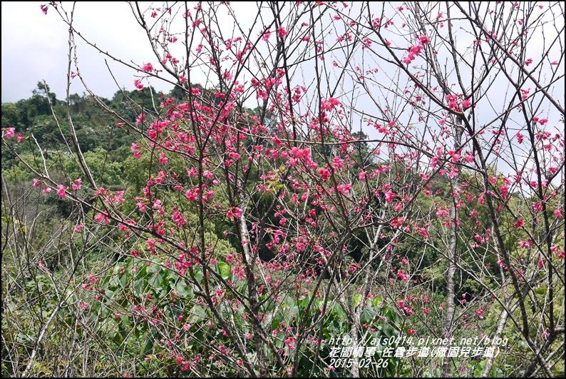 2015-03-佐倉步道(撒固兒步道)33.jpg