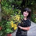 2015-03-黃金石斛7.jpg