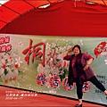 2015-04-鳳林桐花季12.jpg
