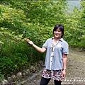 2015-04-鳳林桐花季29.jpg