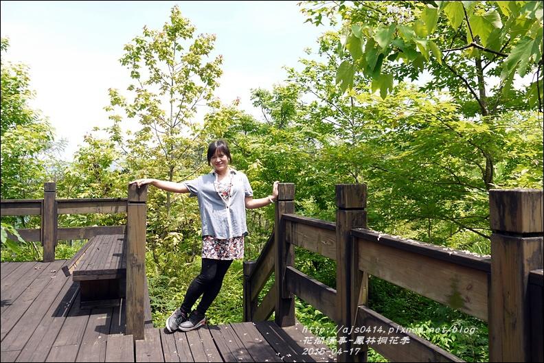 2015-04-鳳林桐花季30.jpg