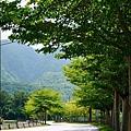 2015-04-縣道193(3).jpg