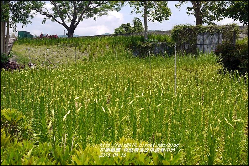 2015-04-秀姑巒溪泛舟遊客中心24.jpg
