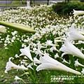 2015-秀姑巒溪泛舟遊客中心(百合花海)7.jpg