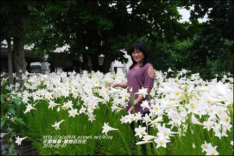 2015-秀姑巒溪泛舟遊客中心(百合花海)17.jpg