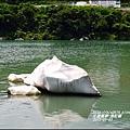 2015-05-長虹橋12.jpg
