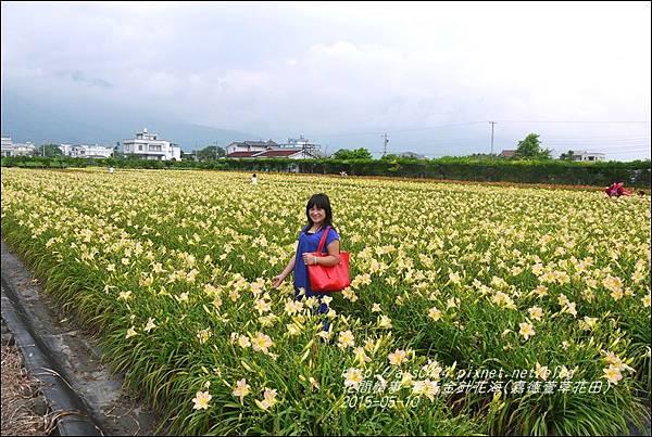 2015-05-嘉德萱草花田(吉安稻香金針花海)33.jpg