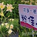 2015-05-嘉德萱草花田(吉安稻香金針花海)7.jpg