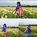 2015-05-嘉德萱草花田(吉安稻香金針花海)19.jpg