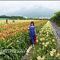 2015-05-嘉德萱草花田(吉安稻香金針花海)22.jpg