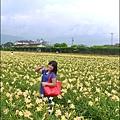 2015-05-嘉德萱草花田(吉安稻香金針花海)21.jpg