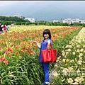 2015-05-嘉德萱草花田(吉安稻香金針花海)23.jpg
