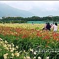 2015-05-嘉德萱草花田(吉安稻香金針花海)31.jpg