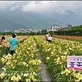 2015-05-嘉德萱草花田(吉安稻香金針花海)30.jpg
