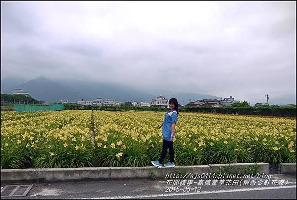 2015-05-嘉德萱草花田(吉安稻香金針花海)35.jpg